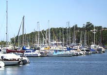 Manly Boat Harbour